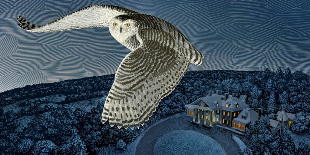 illustration of snowy own flying above Langdon Hall