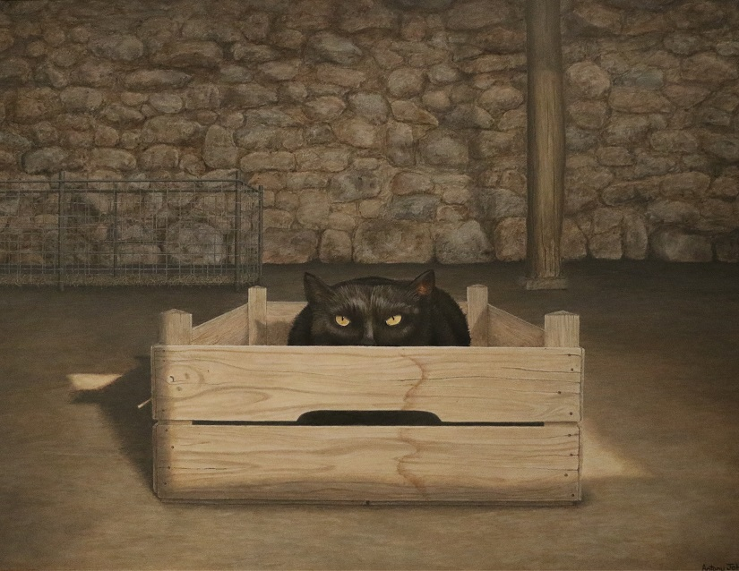Painting of cat in box