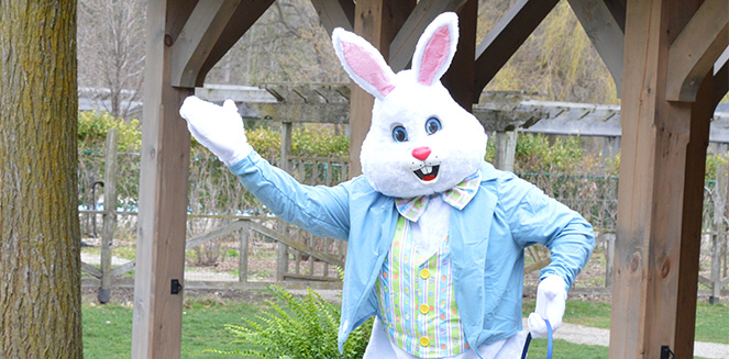 Easter bunny in costume