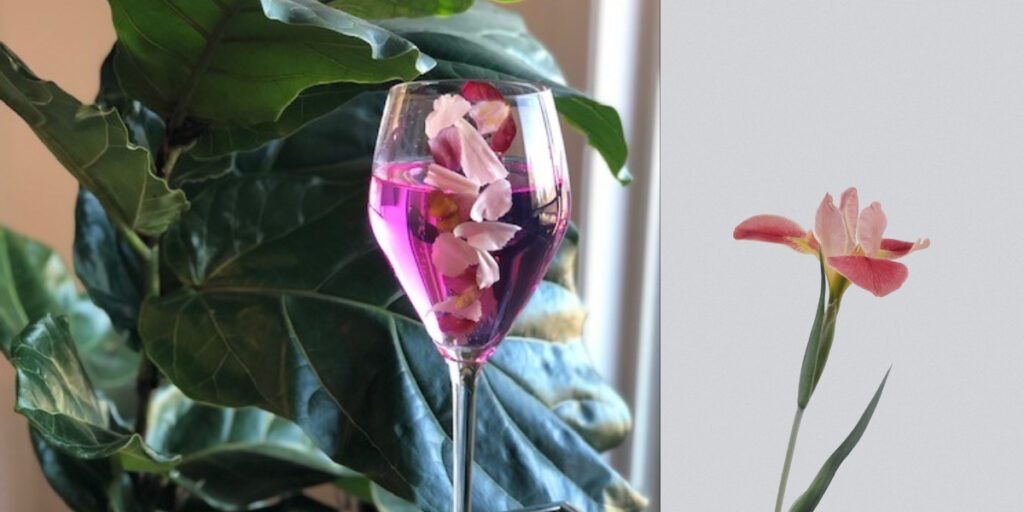 Flowers in champagne flute