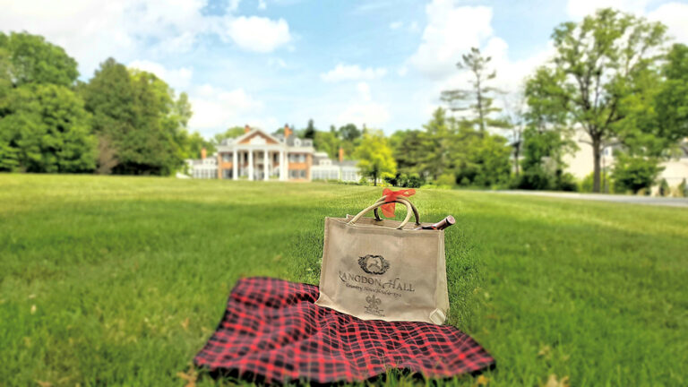 Sunday picnic lunch on the front lawn